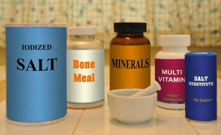 Why Do Homemade Dog Food Diets Need NutrientSupplements?
