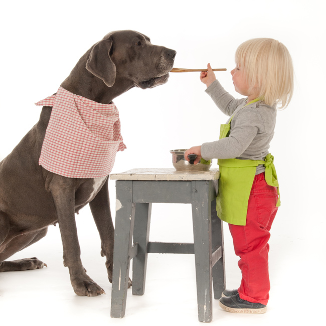 Girl Feeding Dog - How to Judge What is the Best Dog Food