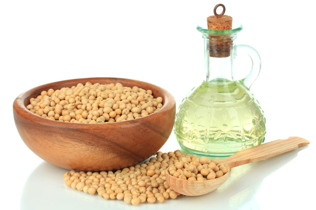 The combination of omega-6 and omega-3 fats in soybean oil makes it a good oil alternative for homemade diets.