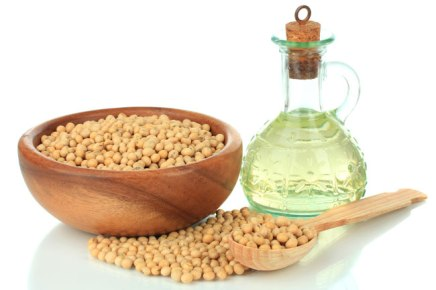 Soybean Oil: A Good Alternative for Homemade Dog Food