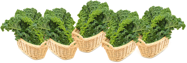 19-cups-Kale-in-Basket-650px